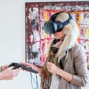 VR Vikings